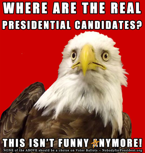 Where are the real presidential candidates? This isn't funny anymore! NONE of the ABOVE should be a choice on Voter Ballots